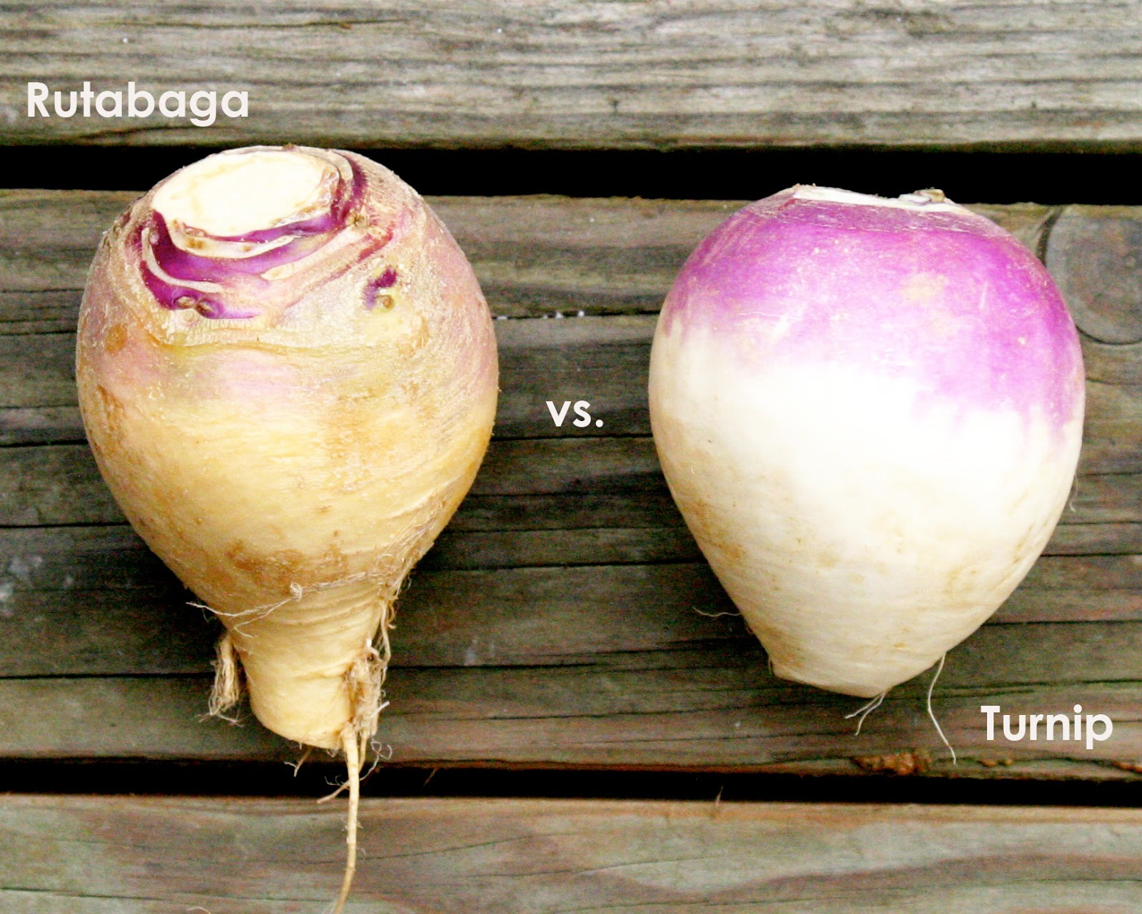 The Overlooked Beauties and Their Health Benefits....ROOT ...