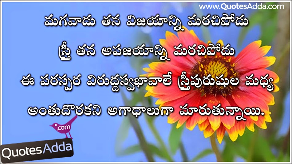 boy and girl telugu fighting quotations