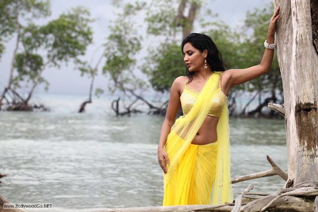 Priya+Anand+(6)