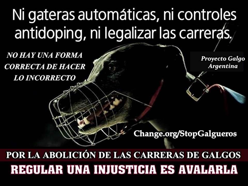 La crueldad no se regula: Se PROHÍBE!