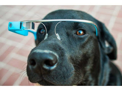 Google Glass Proyecto FIDO