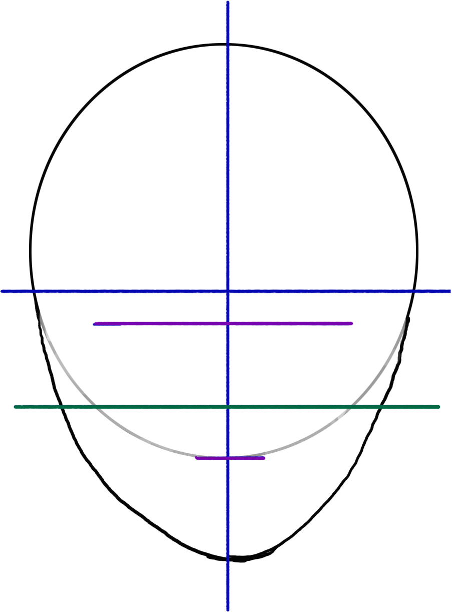 Julie olson books authorillustrator how to draw a facehead you can print this head map to use as a tracing template when practicing your head drawings ccuart Image collections