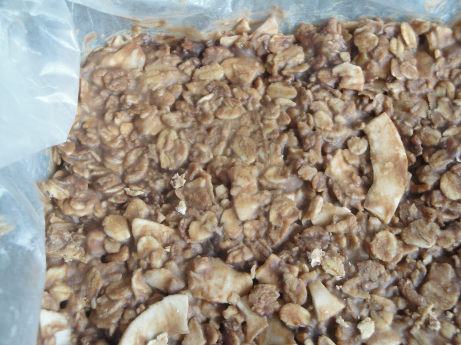 No Bake Chocolate Coconut Oat Bars