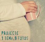 Projecte 1Tema 9Fotos