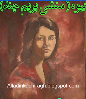 Cover Image for Bewah Urdu novel