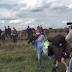 Video Wartawan Hungaria Tertangkap Kamera Saat jegal Dan Menendang Pengungsi Apakah Dipecat ?