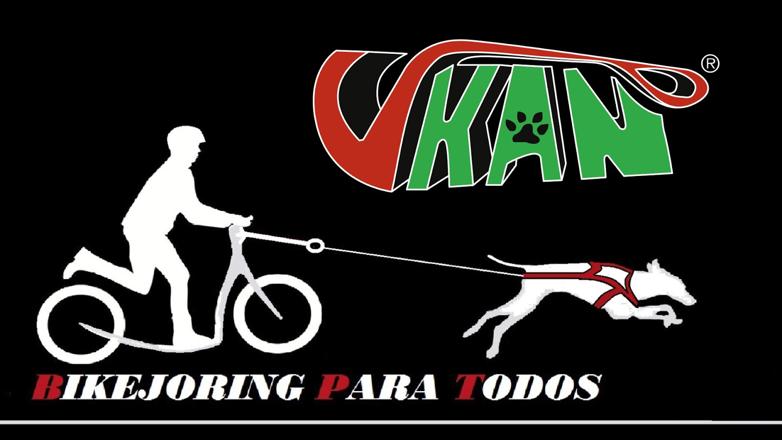 Bikejoring para todos