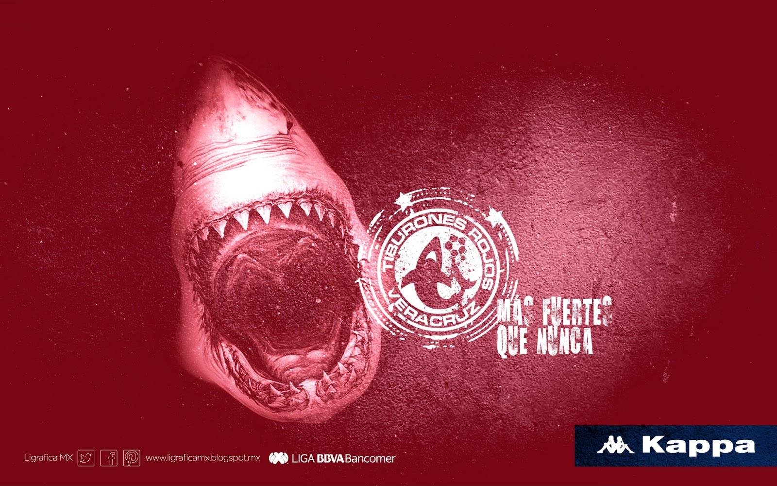 Fotos de las porristas de los tiburones rojos
