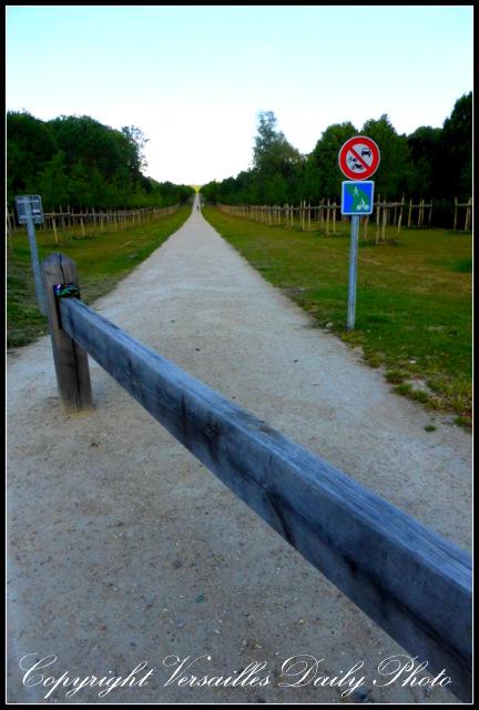 allee des Mortemets Versailles château
