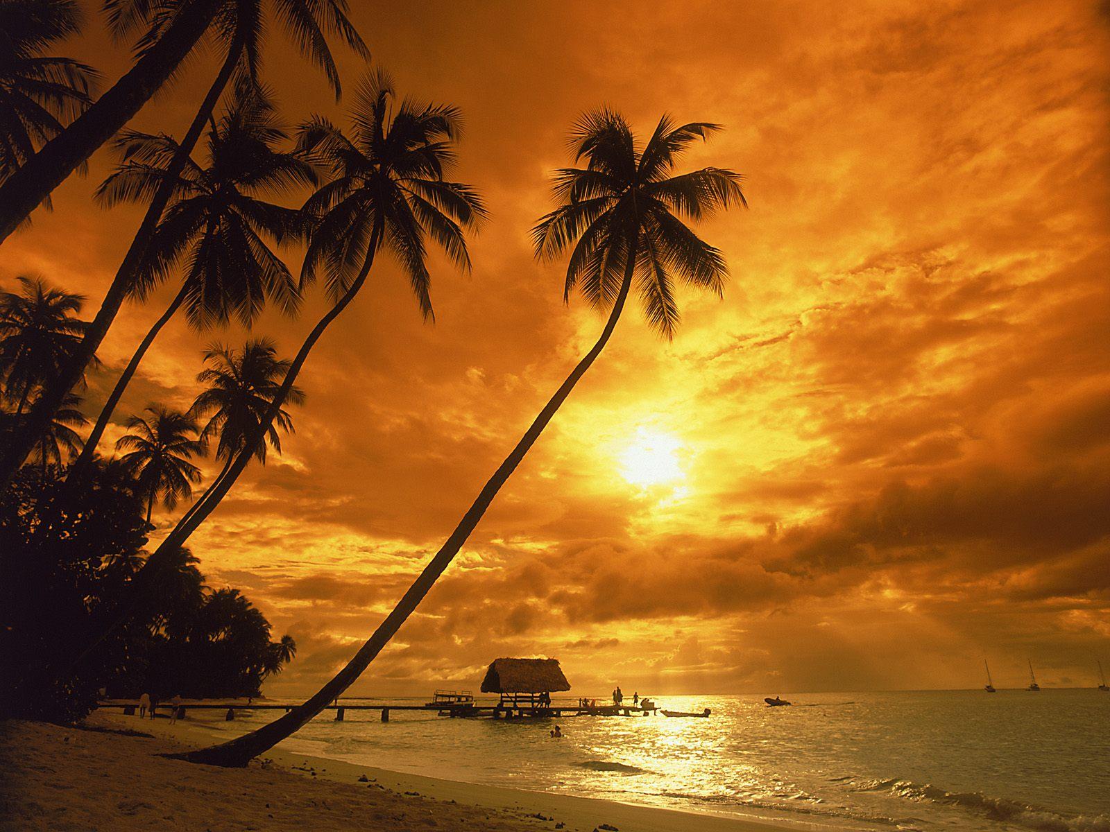 http://3.bp.blogspot.com/-Qx27Mhixty0/TwbE0IbZ6oI/AAAAAAAAAS4/6UtwIHY6MJg/s1600/Sunset+Wallpapers+HD+1.jpg