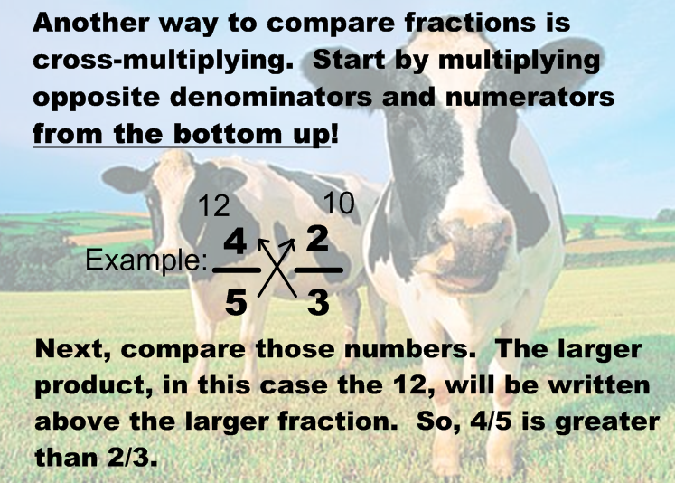 Cross Multiplying Fractions With Variables Worksheets showme – Cross Multiplying Fractions Worksheets