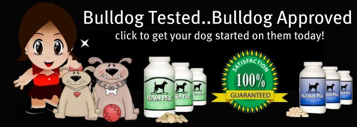 The Best Bulldog Supplement in the USA