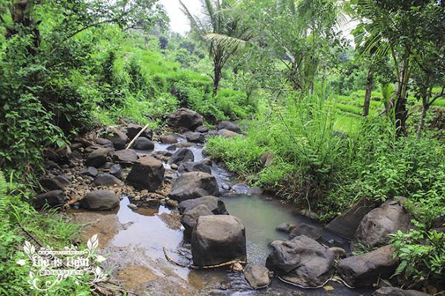 sungai kedung kandang