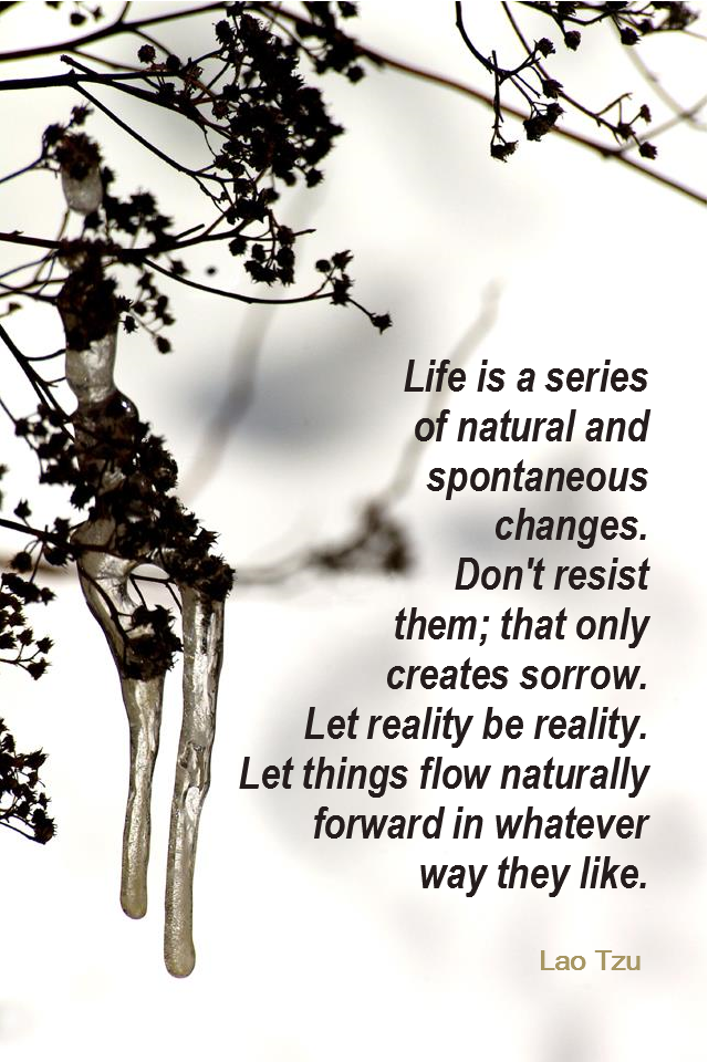 visual quote - image quotation for CHANGE - Life is a series of natural and spontaneous changes. Don't resist them; that only creates sorrow. Let reality be reality. Let things flow naturally forward in whatever way they like. - Lao Tzu