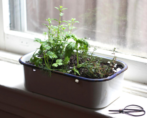 E A T Portable Kitchen Window Herb Garden