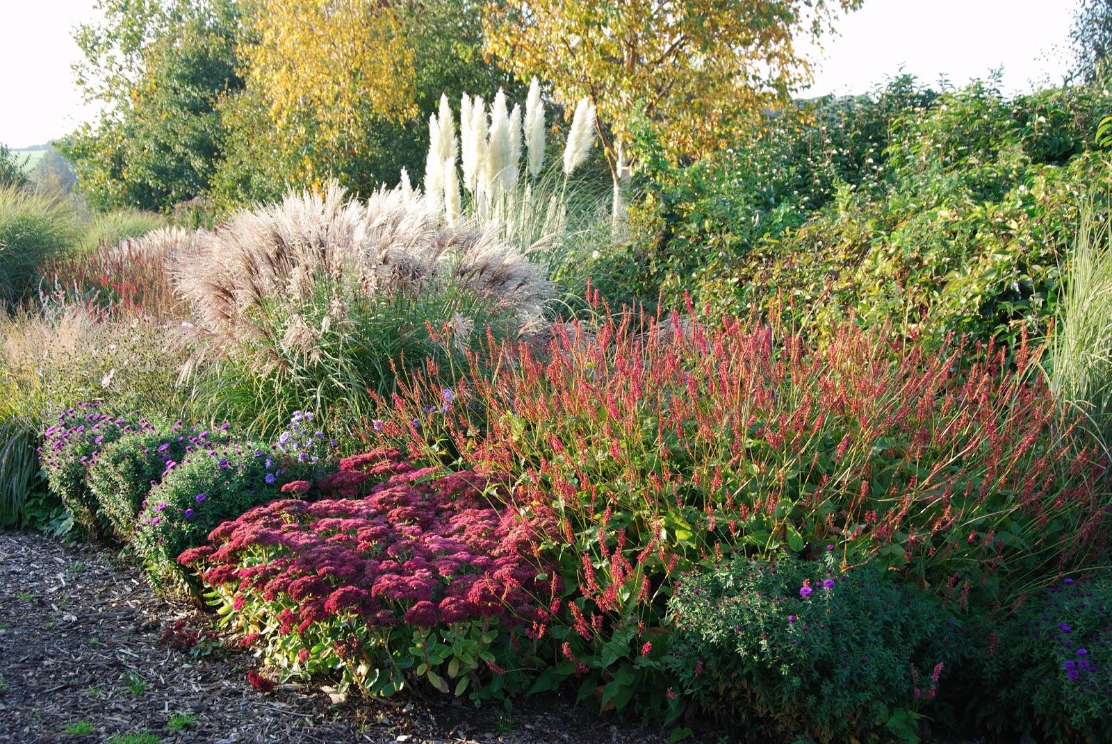 Colette charsley landscape design prairie planting for Prairie style garden design