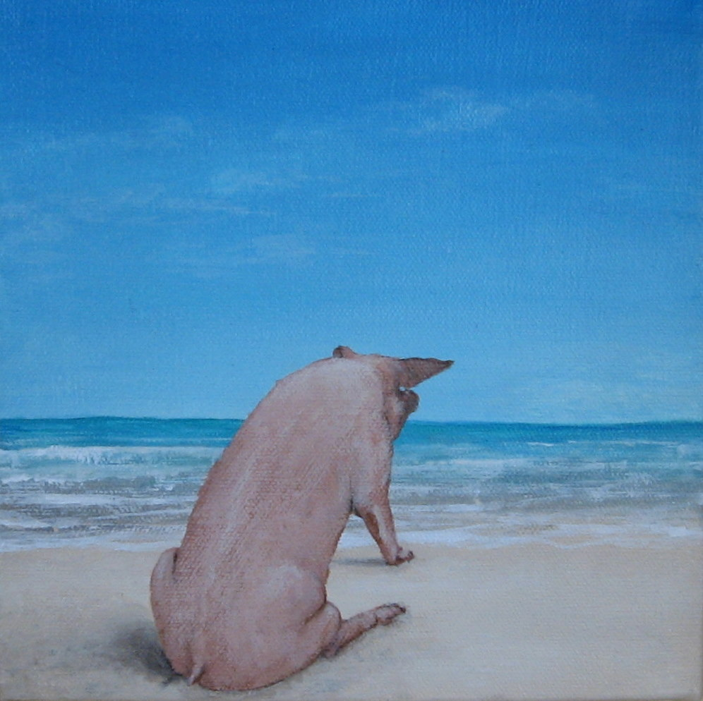 Nude Beach - Terry Nelson. What a pig! Posted by Terry Nelson at 7:44 AM