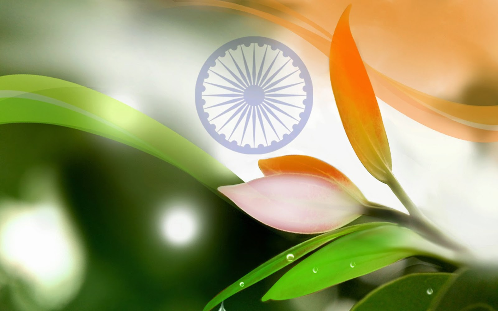 Independence day triranga hd wallpaper