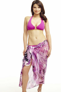 http://www.honeybeelingerie.co.uk/elizabeth-hurley-cerise-dream-sarong.html