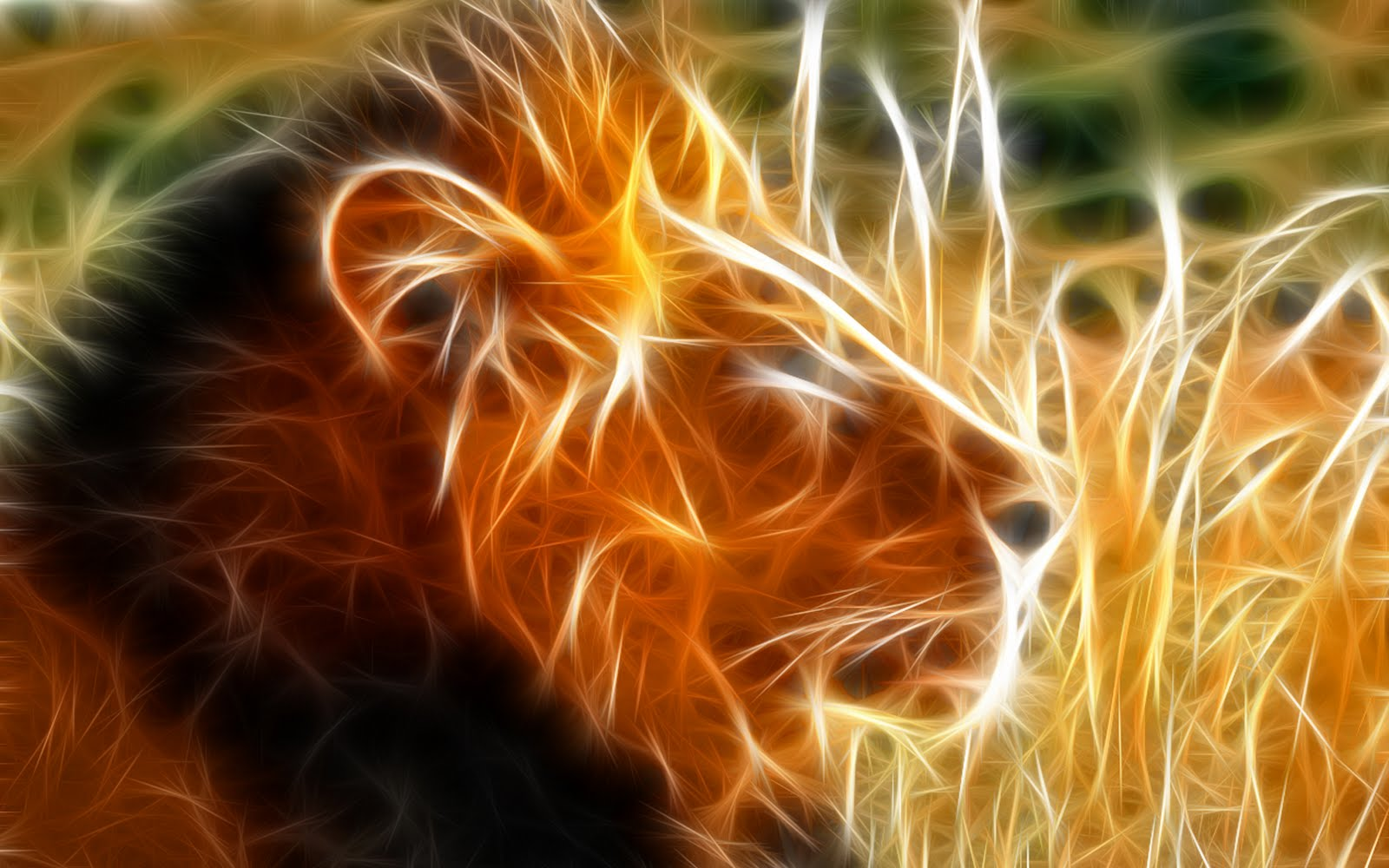 http://3.bp.blogspot.com/-Qxrarm3W_p0/TfDA843B0SI/AAAAAAAAAM4/fcfWlh4X7B0/s1600/The_King_lion_hd_wallpapers.jpg