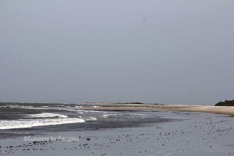 Tanji Bird Reserve Gambia