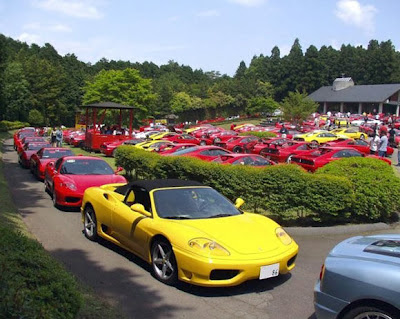 Funny Party Of Ferrari Cars