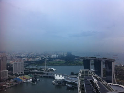 The Fundies hangout, Tower Club, Reading Room, Raffles Place, Penthouse, CBD, view, panorame, MBS