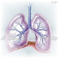Blastomicose, micose profunda que afeta os pulmões.