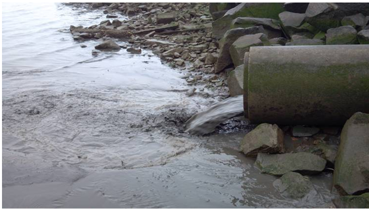 a argumentation of water pollution in hudson river Hudson river fish advisories chemicals in hudson river fish can harm your health even if the fish look healthy and the water looks clean  learn about new york state health advisories on eating hudson river fish.