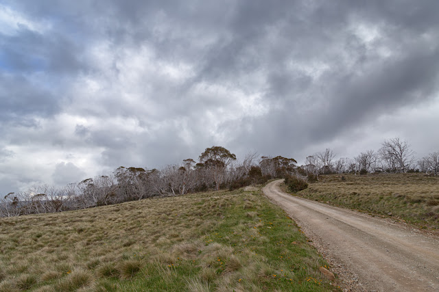 howitt road alpine national park