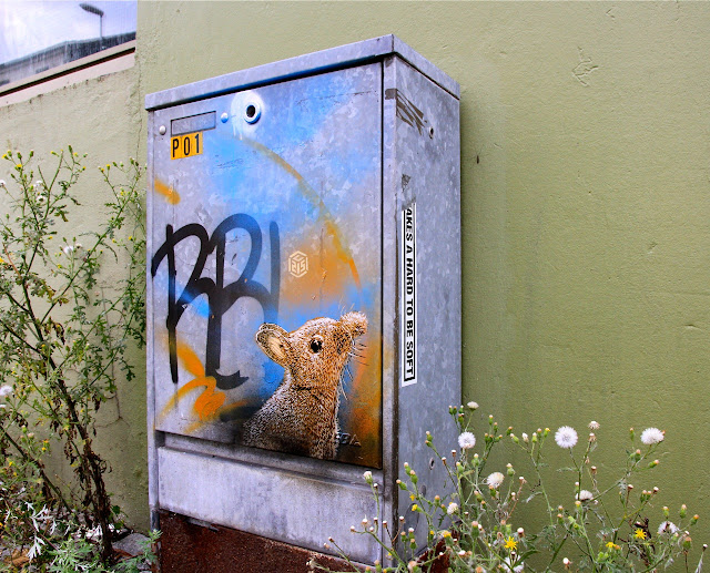 street art by c215 for nuart in norway 5