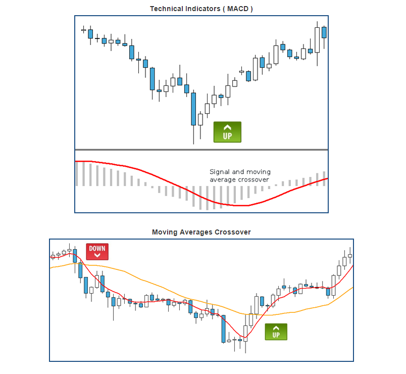 Forex and binary signals