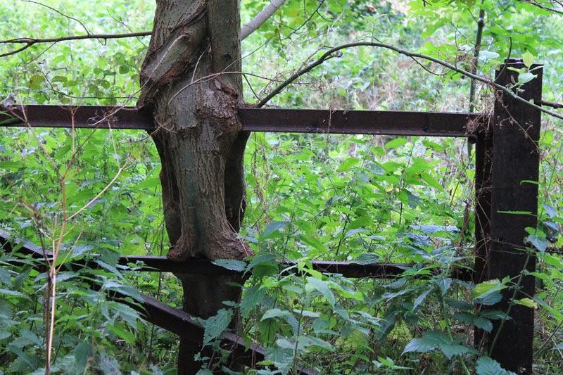 Cancello chiuso lungola vecchia ferrovia