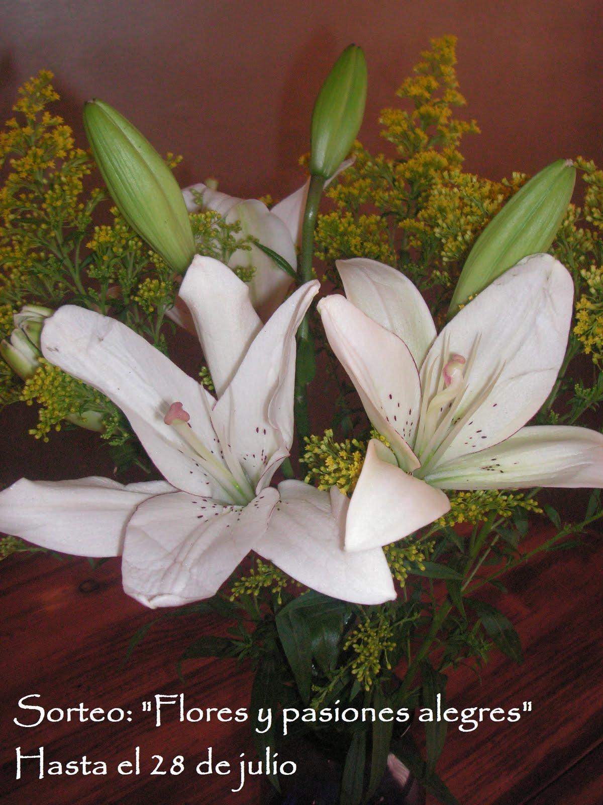La casa de los mart nez sorteo flores y pasiones alegres raffle flowers and happy passions - Casa de los espiritus alegres ...