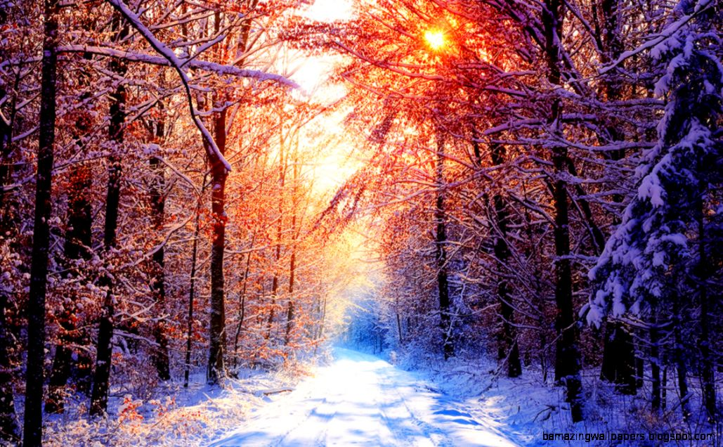 Pretty Winter Backgrounds Tumblr 16259  DFILES