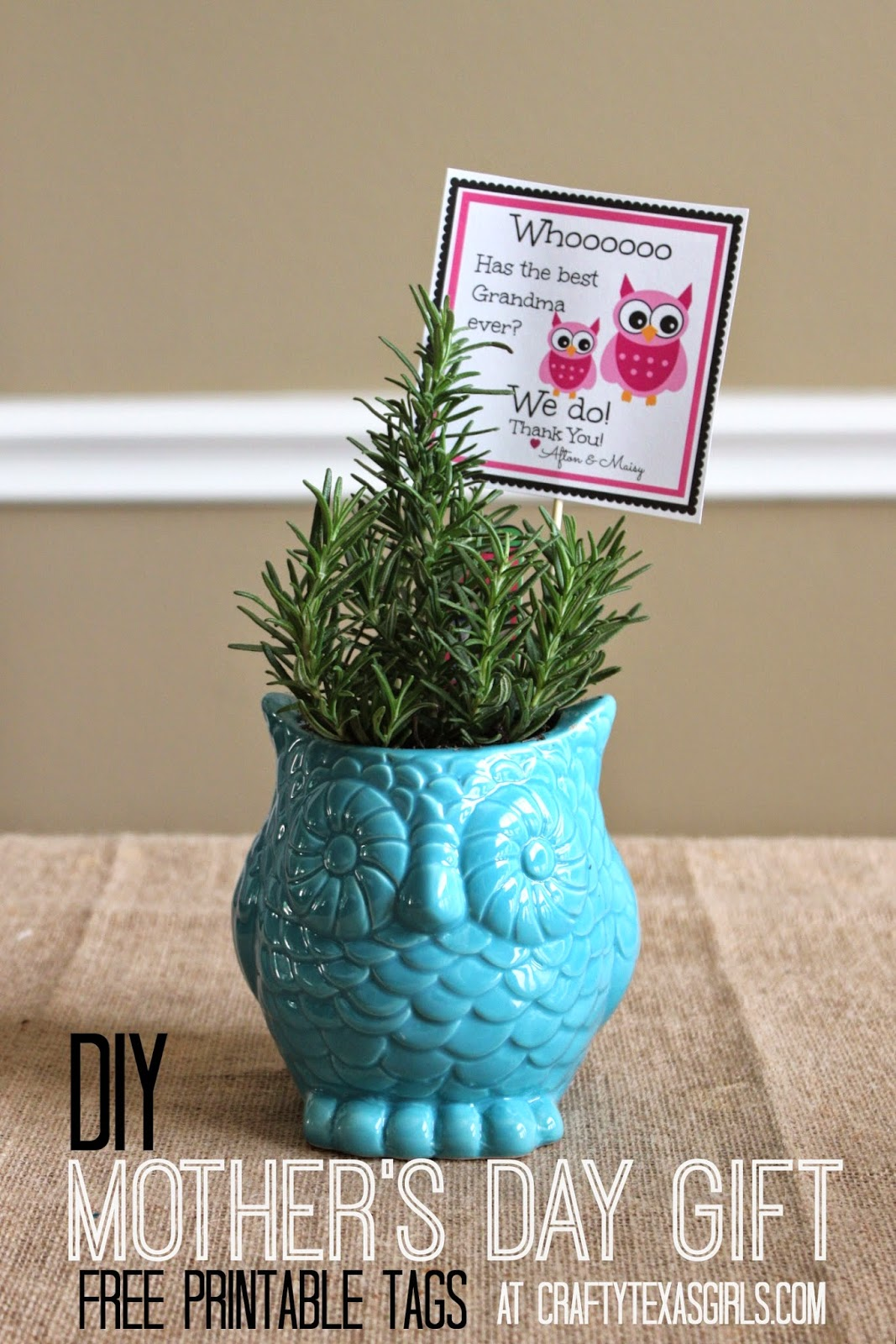 Crafty Texas Girls Diy Gift Idea With An Owl Printable