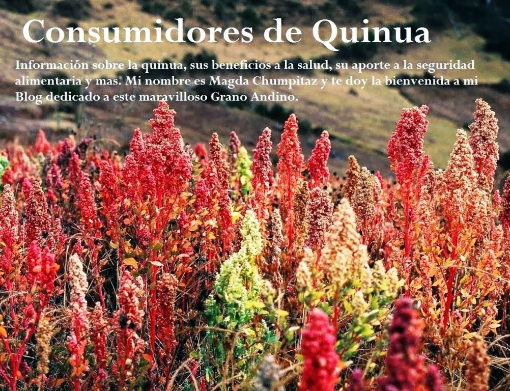 Consumidores de Quinua