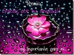 ¡¡ NUESTRO PRIMER PREMIO !!