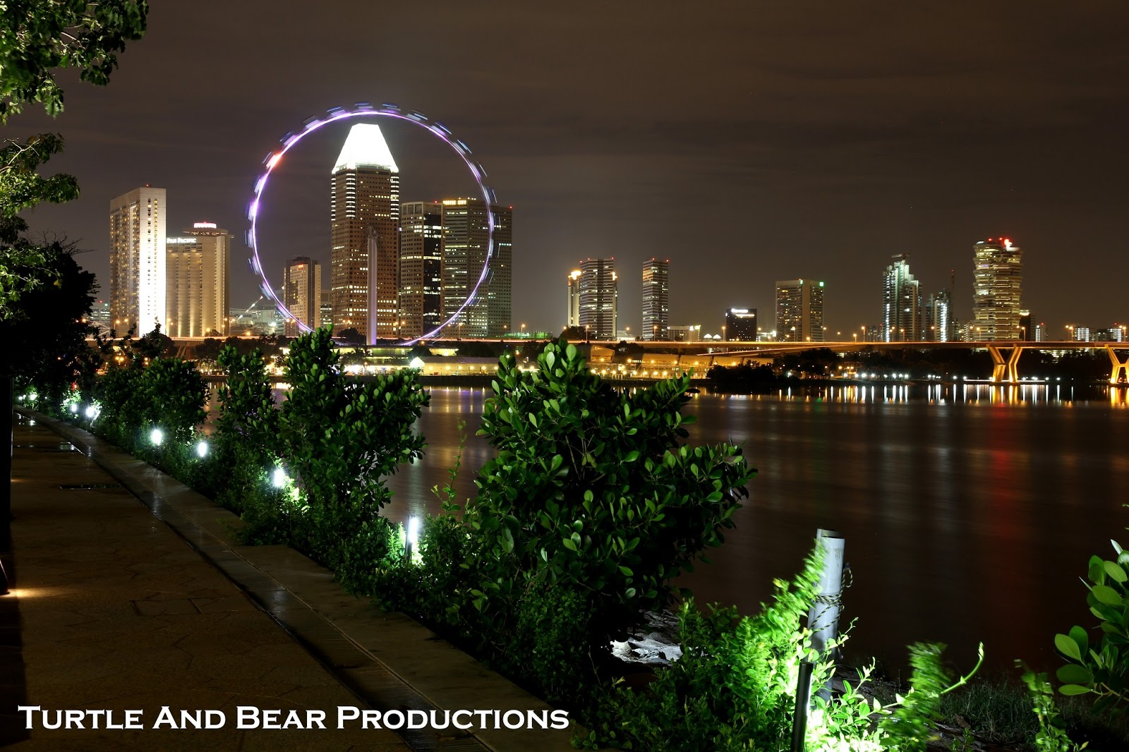 Garden By The Bay Night turtle and bear productions: night shoot @ marina barrage and