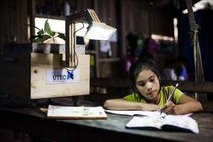 Universidade peruana cria técnica que usa plantas para gerar eletricidade