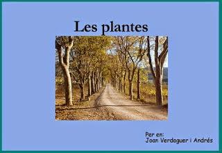 http://clic.xtec.cat/db/jclicApplet.jsp?project=http://clic.xtec.cat/projects/medici/jclic/plantes2/plantes2.jclic.zip&lang=ca&title=Coneixement+del+medi+natural,+social+i+cultural+CI