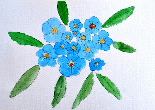 how to draw forget me nots
