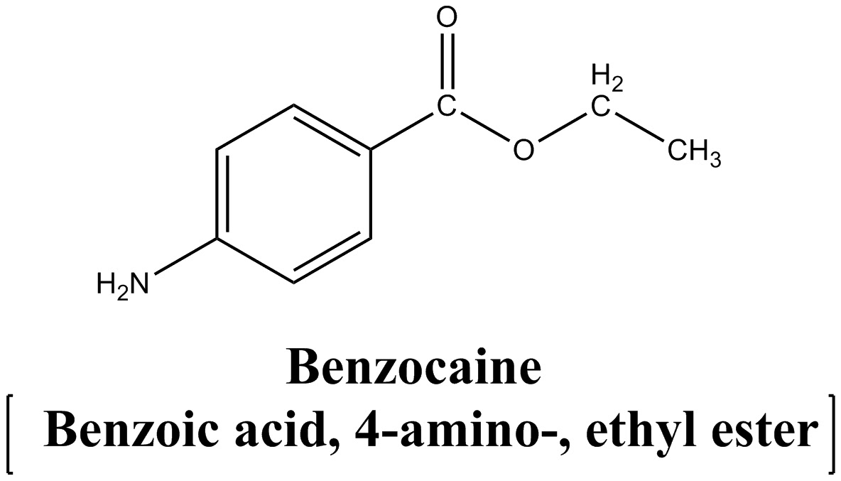 synthesis of benzocaine A surface anesthetic that acts by preventing transmission of impulses along nerve  fibers and at nerve endings [pubchem.