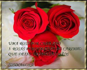 Aniversário de 03 anos do blog RosaSolidão