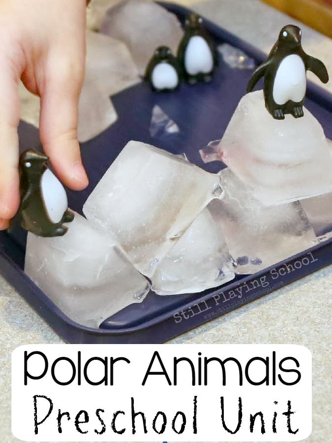 Polar Animals A Preschool Unit Still Playing School