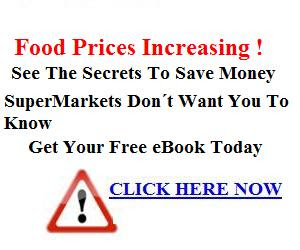 free ebook save on groceries