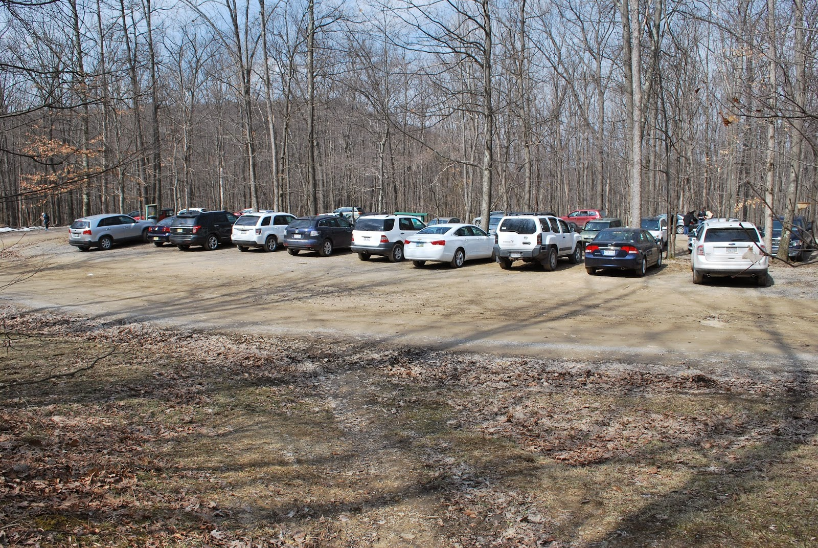 Day Parking Lot at Coopers Rock State Forest
