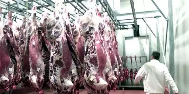 Δείτε ποια εταιρεία βάφτιζε ελληνικά τα κρέατα που έφερνε από Κοζλοντούι μεριά