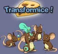 Transformice é um jogo multiplayer altamente viciante, onde você joga com um ratinho no qual o objetivo principal é pegar o queijo e entrar na toca. O jogo oferece dois tipos de ratos: Os Normais que só devem pegar o queijo e entrar na toca, e podem utilizar WASD ou setas do teclado para movimentar, pular e agachar. Os Shaman que são os jogadores escolhidos com a pontuação mais alta e devem ajudar os ratos, utilizando mágicas, criando objetos, estruturas e engenhocas para auxiliar os outros jogadores ou até mesmo para aniquilá-los.