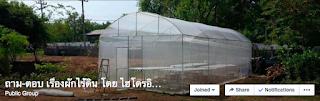 ถาม-ตอบ การปลูกผักไร้ดิน โดยไฮโดรอินโฮม